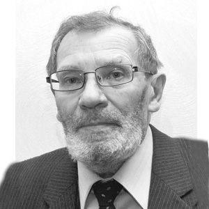 Дмитриев Станислав Владимирович