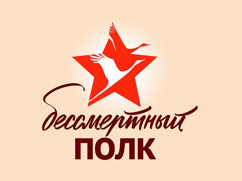 160 студентов Мининского университета вошли в состав волонтерского корпуса Всероссийской акции
