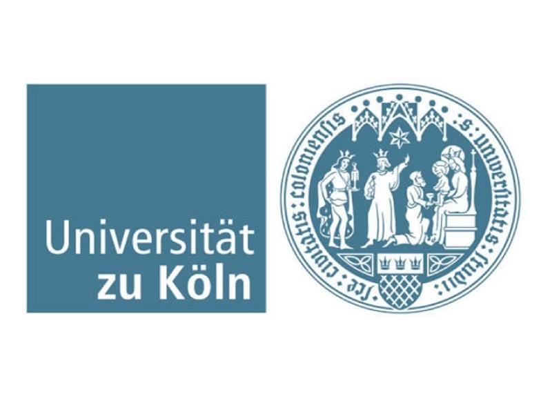 НГПУ им. К. Минина и Кельнский университет подвели итоги своей работы за текущий учебный год