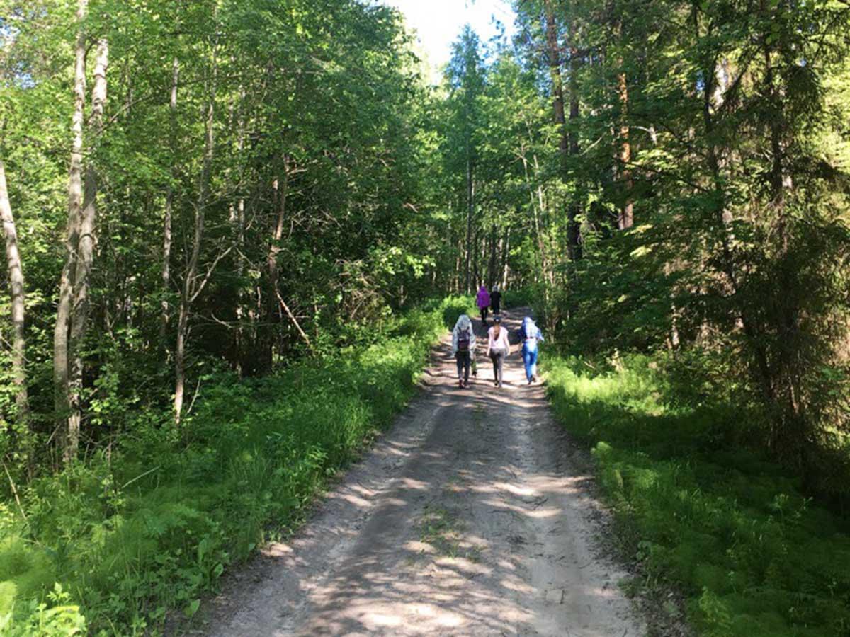 Студенты Мининского университета прошли практику по системам природопользования и охране окружающей среды